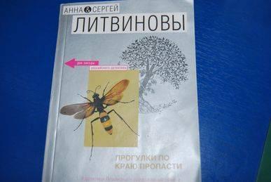 Иллюстрация 1 из 5 для Прогулки по краю пропасти - Литвинова, Литвинов | Лабиринт - книги. Источник: Irinaliz