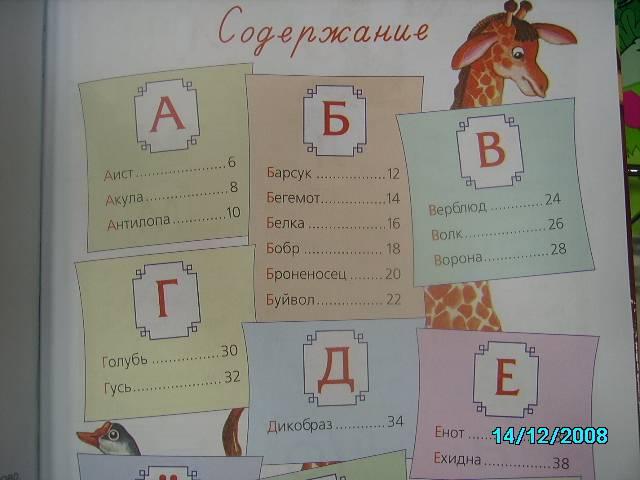 Иллюстрация 1 из 7 для Буквы в зоопарке - Галина Шалаева   Лабиринт - книги. Источник: Звездочка