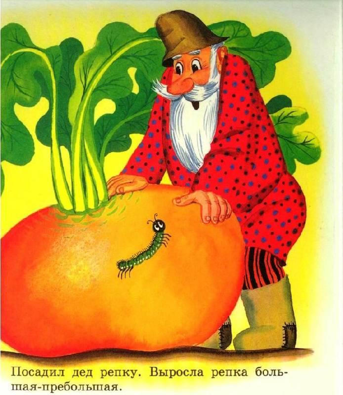 Иллюстрация 1 из 4 для Репка   Лабиринт - книги. Источник: Zhanna