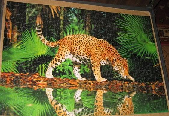 Иллюстрация 1 из 6 для Step Puzzle-1000 79011 Леопард у воды | Лабиринт - игрушки. Источник: Hoty