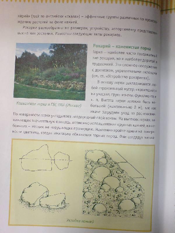 Иллюстрация 1 из 6 для Альпинарии. Устройство, уход, растительность - Римма Карписонова | Лабиринт - книги. Источник: Настёна
