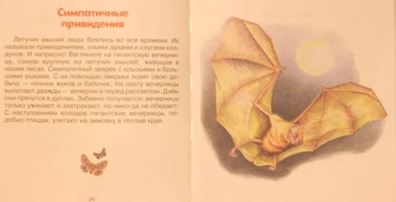 Иллюстрация 1 из 9 для Про зверят - Александр Тихонов | Лабиринт - книги. Источник: Качура Светлана Анатольевна