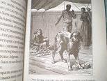 Иллюстрация 1 из 24 для Пятнадцатилетний капитан - Жюль Верн | Лабиринт - книги. Источник: Ирина