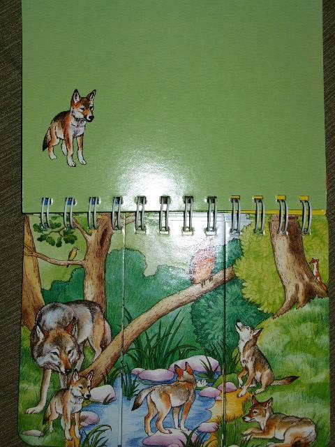 Иллюстрация 1 из 10 для Лесная полянка   Лабиринт - книги. Источник: *  Надежда