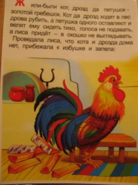 Иллюстрация 1 из 9 для Книжка-непромокашка: Петушок-золотой гребешок | Лабиринт - книги. Источник: Сонтьяжка