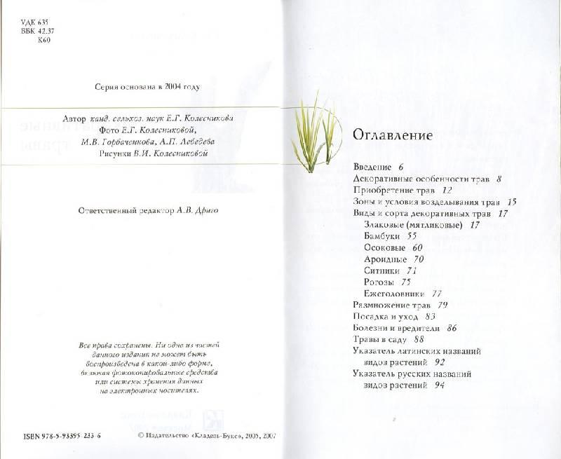 Иллюстрация 1 из 3 для Декоративные травы - Елена Колесникова | Лабиринт - книги. Источник: schek