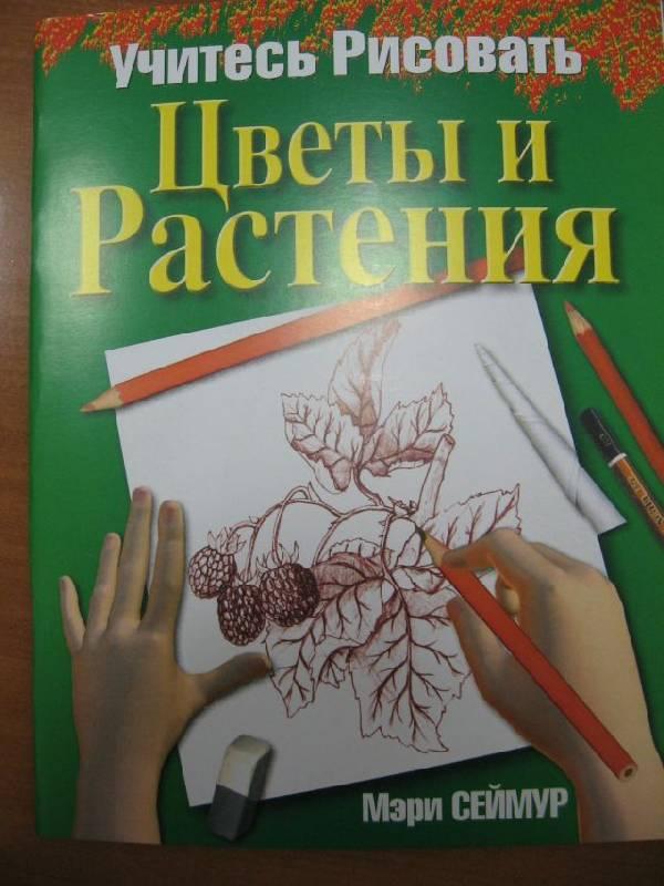 Иллюстрация 1 из 4 для Учитесь рисовать цветы и растения - Мэри Сеймур | Лабиринт - книги. Источник: rizik