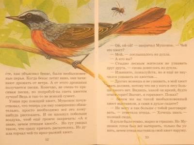 Иллюстрация 1 из 12 для Звери и зверята - Юрий Дмитриев   Лабиринт - книги. Источник: Качура Светлана Анатольевна