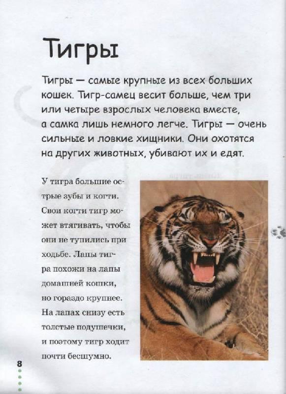 Иллюстрация 1 из 26 для Прогулка по зоопарку - Джинни Джонсон | Лабиринт - книги. Источник: Zhanna