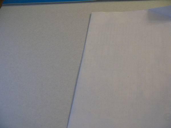 Иллюстрация 1 из 2 для Картон белый А3 8 листов (Летний сад) | Лабиринт - канцтовы. Источник: fidji
