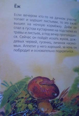 Иллюстрация 1 из 17 для Лесные жители - Александр Тамбиев   Лабиринт - книги. Источник: Полякова Елена Николаевна