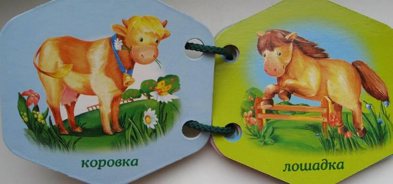 Иллюстрация 1 из 3 для Домашние животные | Лабиринт - книги. Источник: Нюта