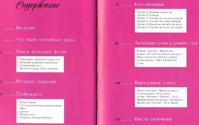Иллюстрация 1 из 15 для Английские розы Дэвида Остина - Наталья Анзигитова | Лабиринт - книги. Источник: ТТ