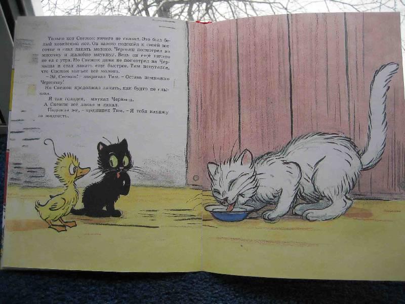 Иллюстрация 1 из 7 для Знаменитый утенок Тим. Рисунки Сутеева   Лабиринт - книги. Источник: Трухина Ирина