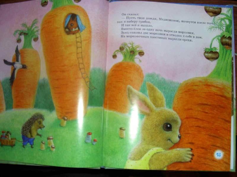 Иллюстрация 1 из 44 для Ежик в тумане: Сказки - Сергей Козлов | Лабиринт - книги. Источник: Nattali