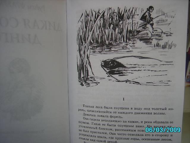 Иллюстрация 1 из 20 для Дикая собака Динго, или повесть о первой любви - Рувим Фраерман | Лабиринт - книги. Источник: Звездочка