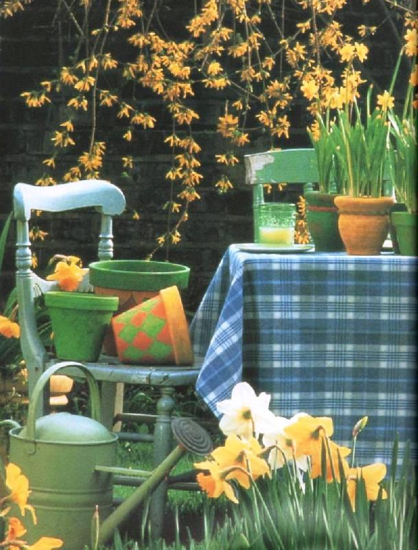 Иллюстрация 1 из 15 для Как озеленить балкон - Стефани Доналдсон | Лабиринт - книги. Источник: Zhanna