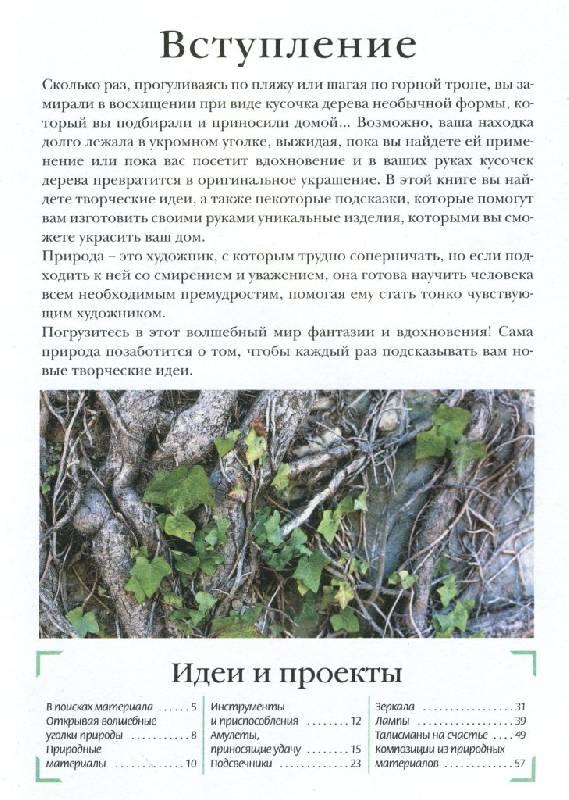 Иллюстрация 1 из 2 для Оригинальные поделки из природных материалов - Валентина Чиприани   Лабиринт - книги. Источник: ТТ