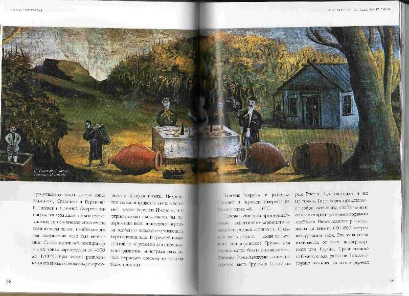 Иллюстрация 1 из 37 для Вина Грузии - Николай Мехузла | Лабиринт - книги. Источник: Урядова  Анна Владимировна