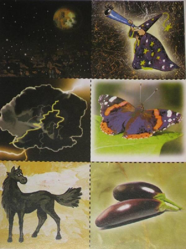 Иллюстрация 1 из 4 для Цвет и его значение. Развивающие игры - Наталья Писаренко | Лабиринт - игрушки. Источник: Dana-ja