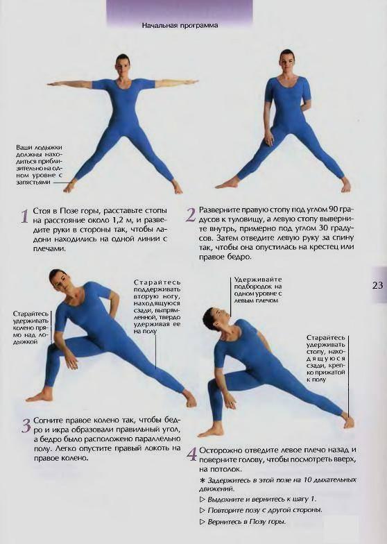 Иллюстрация 1 из 21 для Йога для начинающих - Ансари, Ларк | Лабиринт - книги. Источник: Злобин