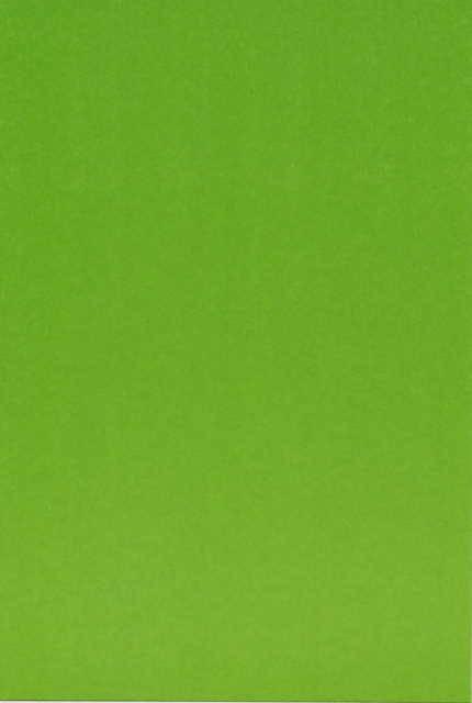 Иллюстрация 1 из 8 для Картон цветной А4 8 листов 8 цветов L-05-101 (В джунглях) | Лабиринт - канцтовы. Источник: _Елена_