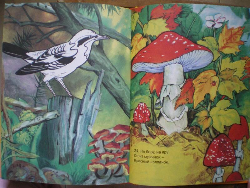 Иллюстрация 1 из 4 для Загадки в картинках | Лабиринт - книги. Источник: Григоренкова  Ольга Игоревна