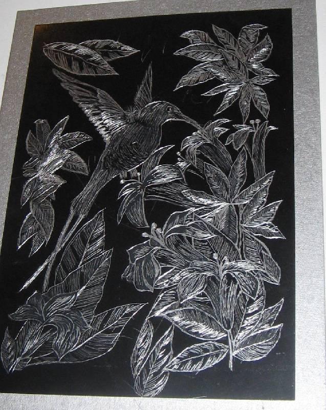 Иллюстрация 1 из 3 для Нектарница. Картина-гравюра в оригинальном паспарту | Лабиринт - игрушки. Источник: Semisvetik