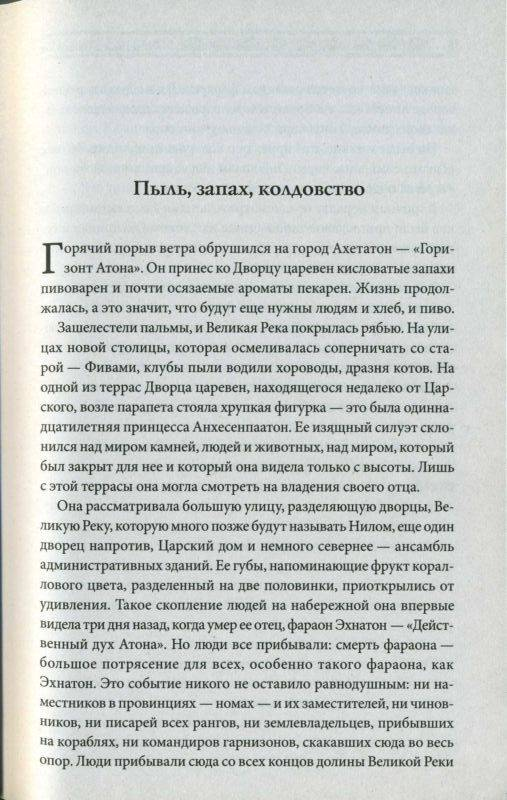 Иллюстрация 1 из 2 для Гнев Нефертити - Жеральд Мессадье | Лабиринт - книги. Источник: Langsknetta