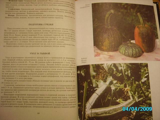 Иллюстрация 1 из 39 для Подарок садоводам и огородникам - Октябрина Ганичкина   Лабиринт - книги. Источник: Звездочка