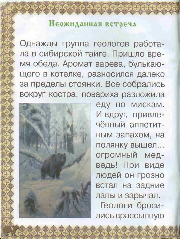 Иллюстрация 1 из 41 для Косолапые истории. Все о медведях - Екатерина Малинина   Лабиринт - книги. Источник: Тярионнакуби
