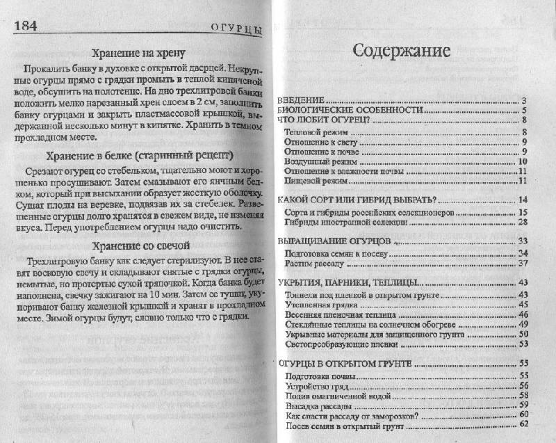 Иллюстрация 1 из 2 для Огурцы - Татьяна Октябрьская | Лабиринт - книги. Источник: ТТ