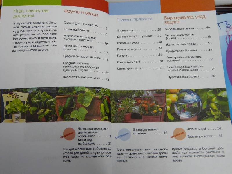 Иллюстрация 1 из 3 для Выращиваем овощи и фрукты на балконе - Натали Фассман | Лабиринт - книги. Источник: Перфекционистка
