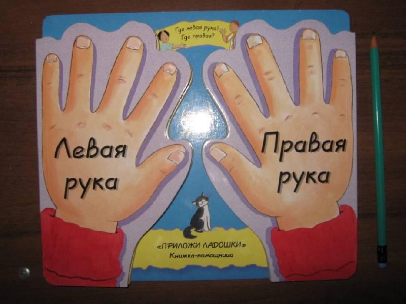 Иллюстрация 1 из 9 для Левая рука, правая рука. Книга с фигурной вырубкой - Джанет Браун | Лабиринт - книги. Источник: Спанч Боб