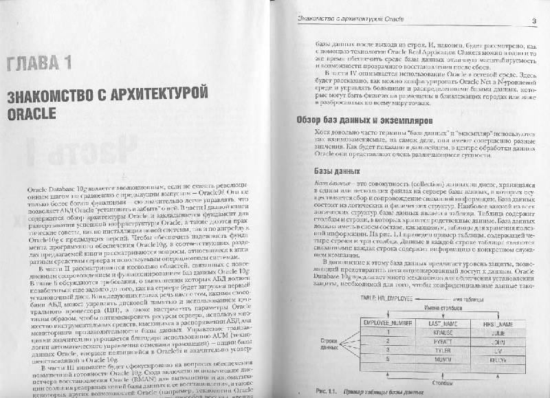 Иллюстрация 1 из 31 для ORACLE Database 10g: Настольная книга администратора - Кевин Луни   Лабиринт - книги. Источник: Afina