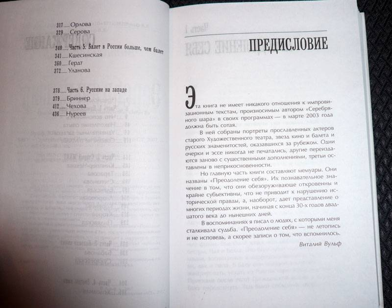 Иллюстрация 1 из 16 для Серебряный шар - Виталий Вульф | Лабиринт - книги. Источник: Кнопа2