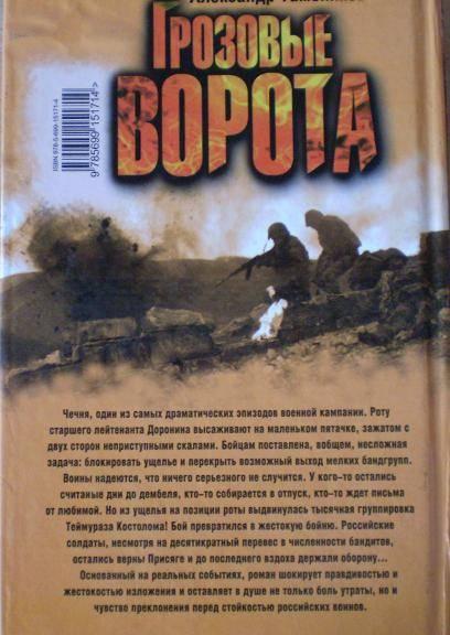 Иллюстрация 1 из 3 для Грозовые ворота: Роман - Александр Тамоников | Лабиринт - книги. Источник: Ирина