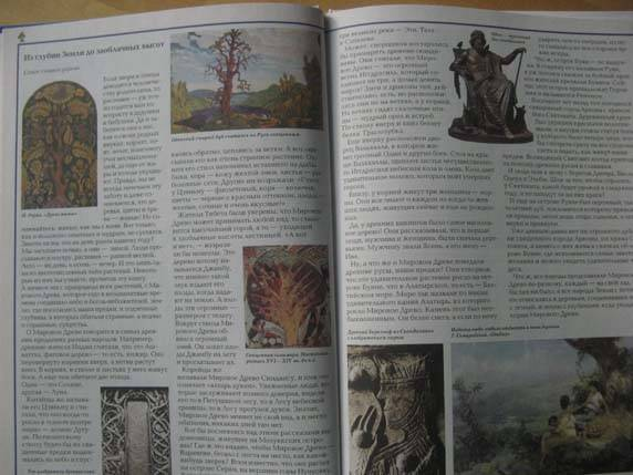 Иллюстрация 1 из 37 для Удивительный мир растений - Виктор Калашников   Лабиринт - книги. Источник: Болдырева  Мария -