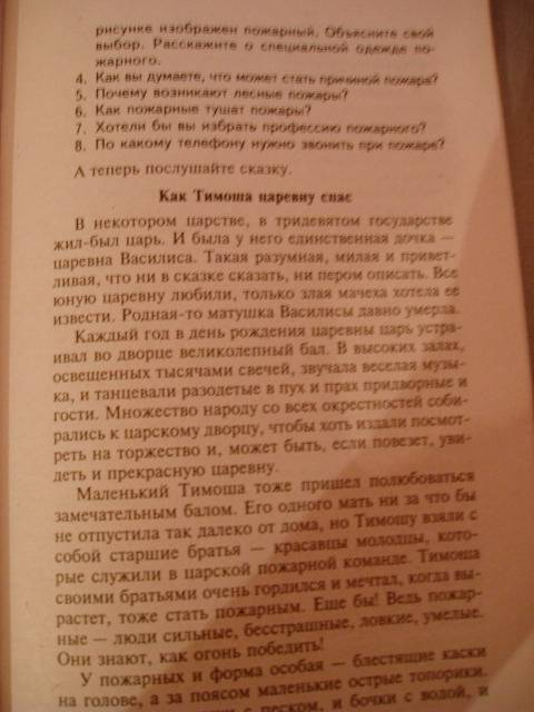 Иллюстрация 31 из 37 для Беседы о правилах пожарной безопасности - Татьяна Шорыгина   Лабиринт - книги. Источник: Стич