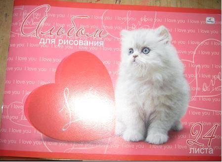 Иллюстрация 1 из 3 для Альбом для рисования 24 листа (А124366) Пушистый котенок   Лабиринт - канцтовы. Источник: kitteyn