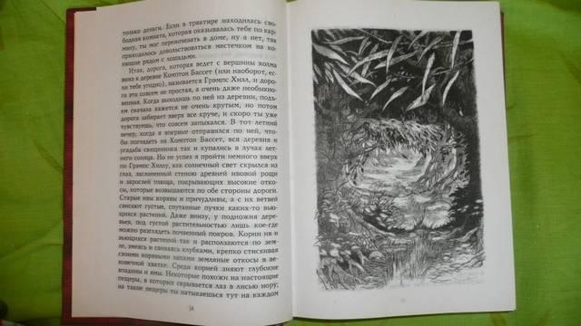 Иллюстрация 1 из 9 для Продавец троллей: Роман - Бент Якобсен | Лабиринт - книги. Источник: КалинаМалина