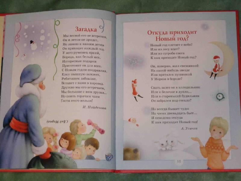 Иллюстрация 1 из 38 для Встречаем Новый год и Рождество | Лабиринт - книги. Источник: Трухина Ирина