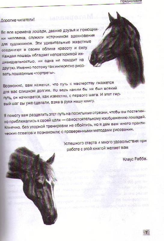 Иллюстрация 1 из 2 для Рисуем лошадей - Клаус Рабба | Лабиринт - книги. Источник: Ya_ha