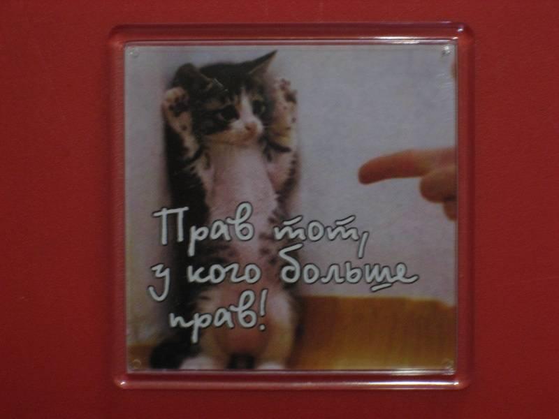 Иллюстрация 1 из 3 для Магнитные подарочки. Прав тот, у кого больше прав! (М-400) | Лабиринт - сувениры. Источник: малышка Мю