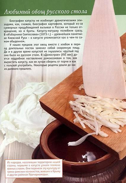 Иллюстрация 1 из 23 для Капуста в натуральном питании - Людмила Потемкина | Лабиринт - книги. Источник: OOlga