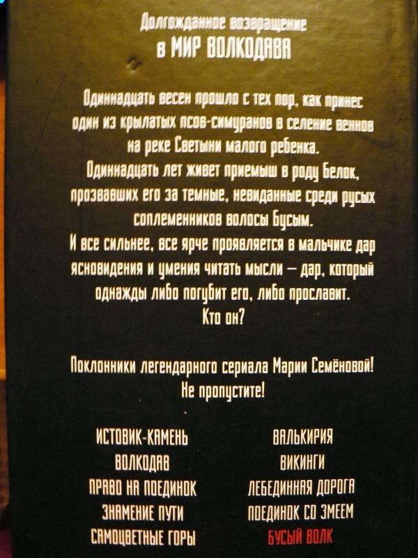 Иллюстрация 1 из 4 для Бусый Волк - Семенова, Тедеев | Лабиринт - книги. Источник: Concordia