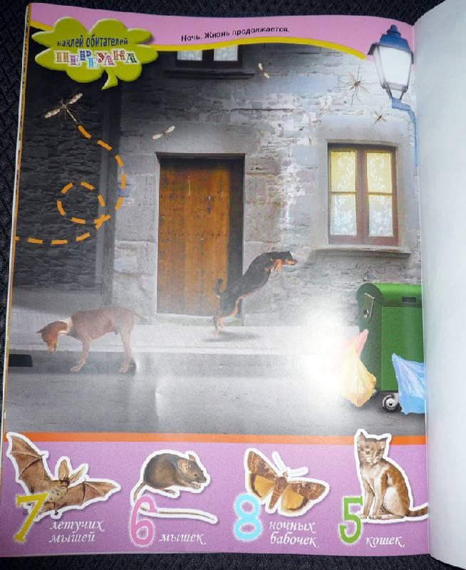 Иллюстрация 15 из 18 для Животные в городе. Живой мир планеты | Лабиринт - книги. Источник: Кнопа2