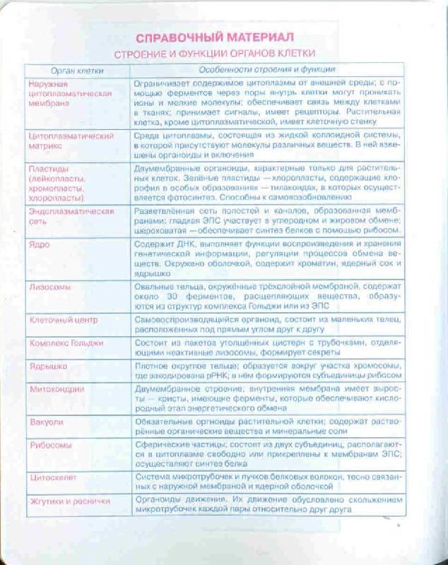 Иллюстрация 1 из 5 для Тетрадь 48 листов (3977) Биология | Лабиринт - канцтовы. Источник: Тярионнакуби
