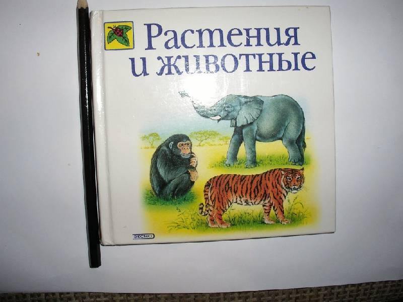Иллюстрация 1 из 6 для Растения и животные - Инна Светлова   Лабиринт - книги. Источник: Tiger.
