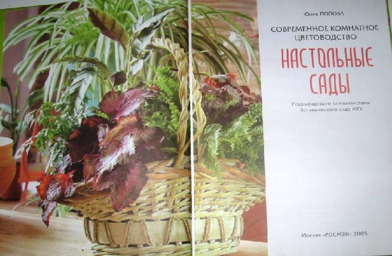 Иллюстрация 1 из 12 для Настольные сады - Юлия Попова | Лабиринт - книги. Источник: Zhanna